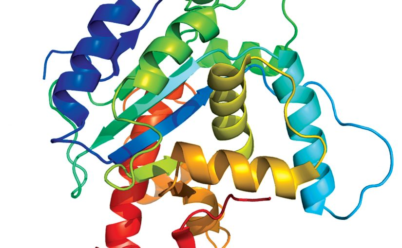 Proteins may hold key to fighting covid19
